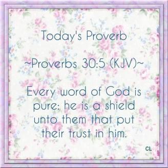 book of proverbs | Lee Duigon