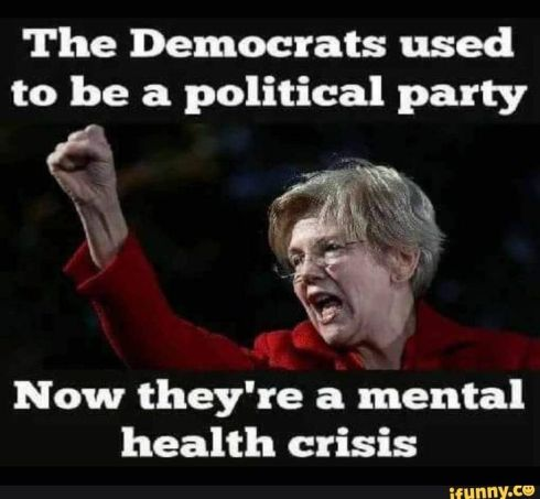 Image result for images of insane democrats